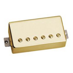 Tonerider AC2 Bridge - Gold Cover