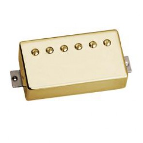 Tonerider AC2 Neck - Gold Cover